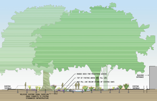Cross section of proposed LID rain garden feature